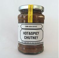 Picture of Hot & Spicey Chutney 340g
