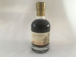 Picture of Blackcurrant Gin 20cl